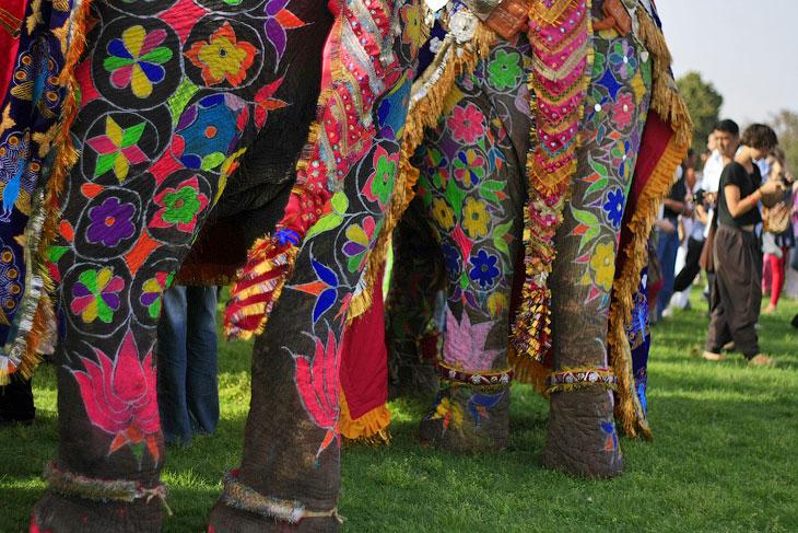 our festivals of india essay